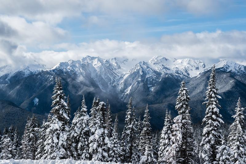 Hurricane Ridge Olympic Mountains