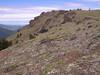 Mt  Townsend 010