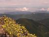 Mt  Townsend 022