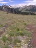 Mt  Townsend 014
