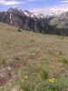 Mt  Townsend 019