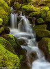 07-2013 Sol Duc Falls Trail