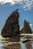 06-2013 Rialto Beach Two Stacks