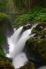 Sol-Duc-Falls-07-2011