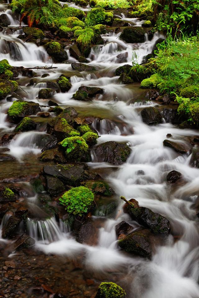 Falls near Hoh River