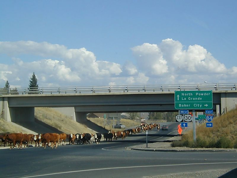 Freeway underpass traffic in rural eastern Oregon