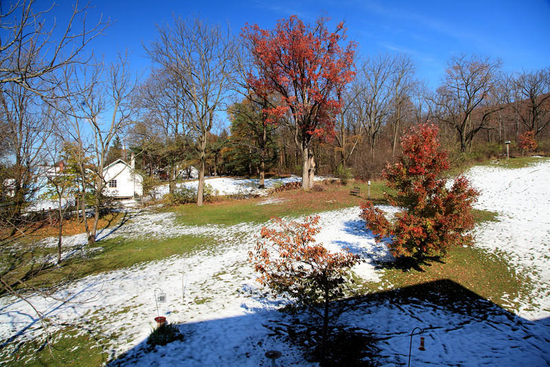 And by the afternoon of Oct 30, the snow melted and we were back to normal.