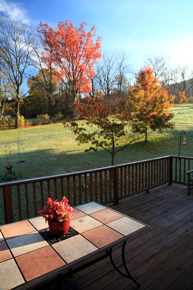 Sunrise over our backyard after the first hard frost, October 28, 2011.