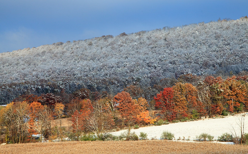 Mt. Nittany under early snow, October 30, 2011, Oak Hall, PA.