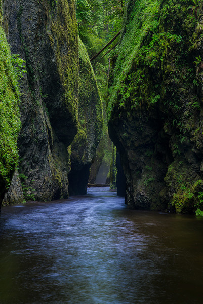 Oneonto Gorge,<br /> Oregon