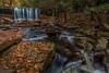 Oneida Falls<br /> Ricketts Glen State PArk