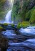 Walchella Falls, Columbia River Gorge