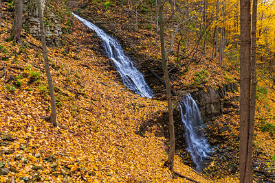 Scenic Falls