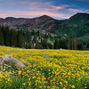 Albion Basin Summer Sunset