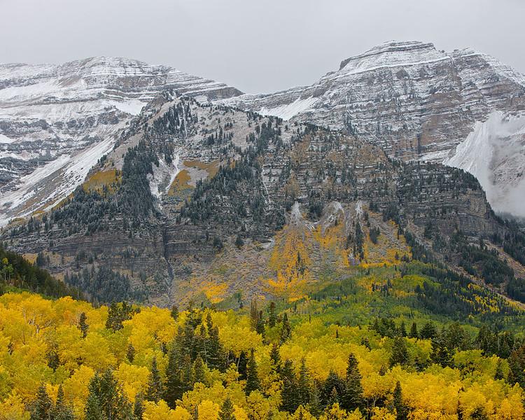 Fall Colors of Timpanogos
