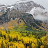Fall Colors on Timpanogos vert.