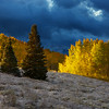 Darkside of Aspens