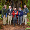 Group at Stout Memorial Redwoods