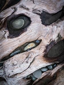 Rialto Beach Driftwood, Olympic National Park, WA