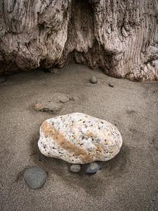 First Beach 709, La Push, WA