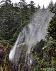 Cape Meares, Waterfall that falls up!