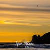 44  G Beach Sunset Sundog