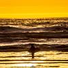 20  G Surfer and Sunset V