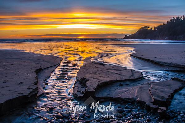 Oregon Coast 2.10.16