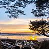 101  G Beach Sunset Tree
