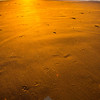 79  G Beach Sunset Dog Sand V