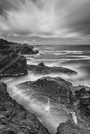 Shore Acres, Jagged Coast. 2nd in digital B&W, N4C November 2018.