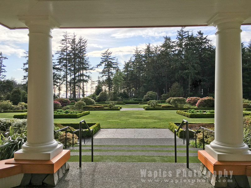 Oregon-Redwood-1398