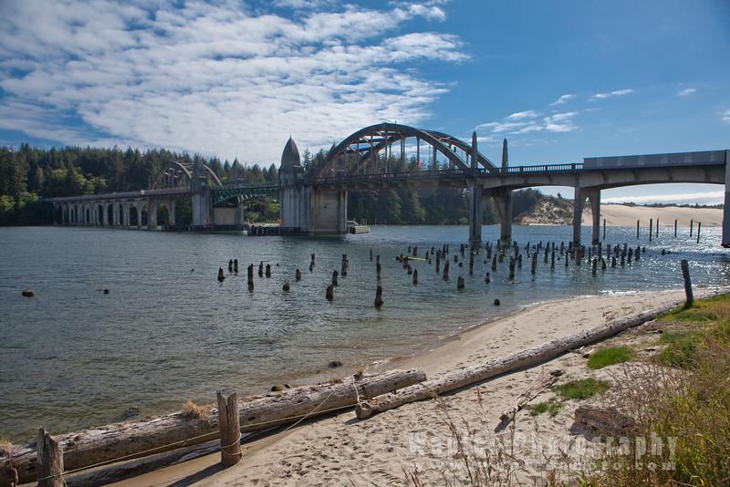 Oregon-Redwood-7924