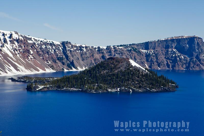 Oregon-Redwood-7828