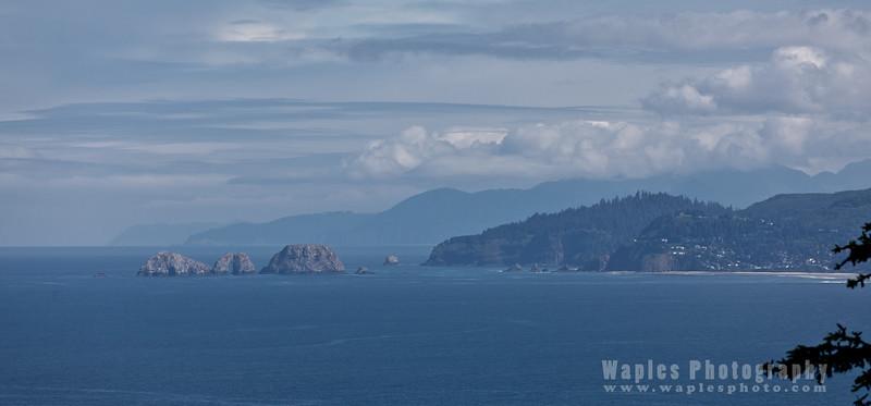 Oregon-Redwood-8245