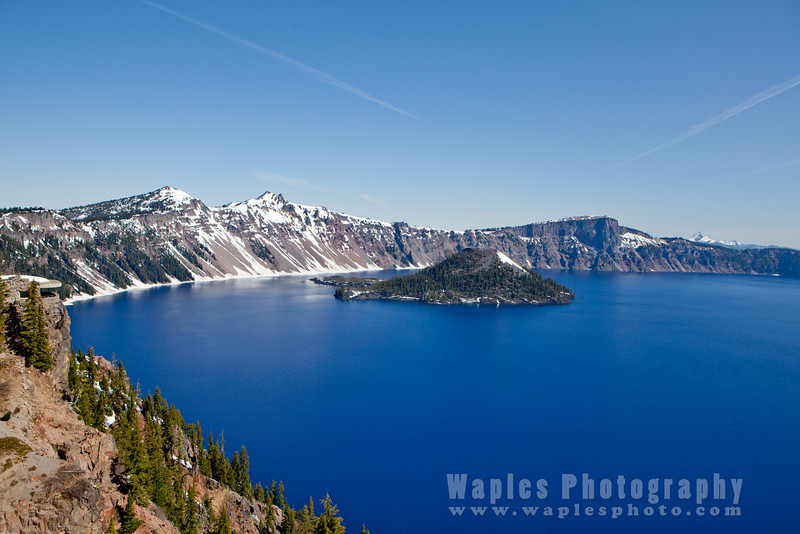 Oregon-Redwood-7823