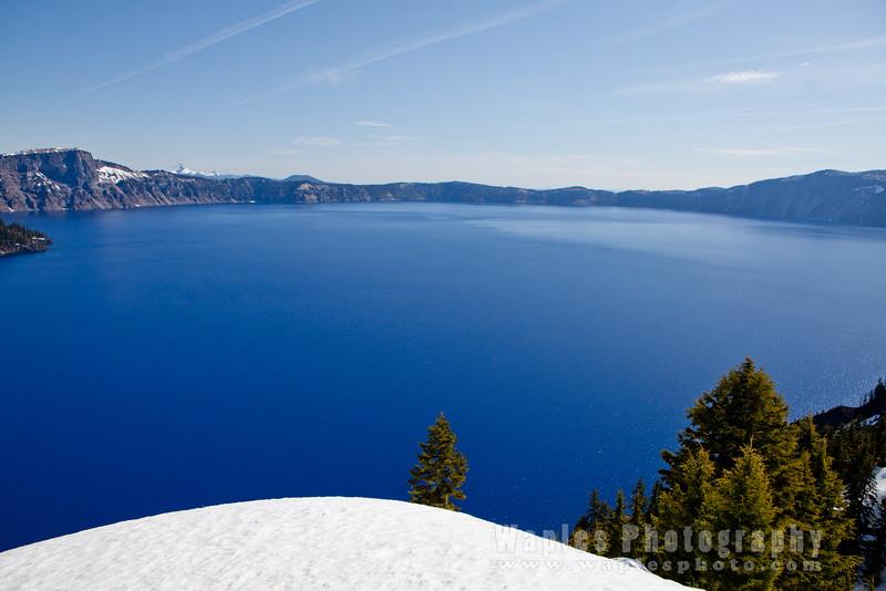 Oregon-Redwood-7825