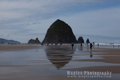 Oregon Coast and Redwood Empire