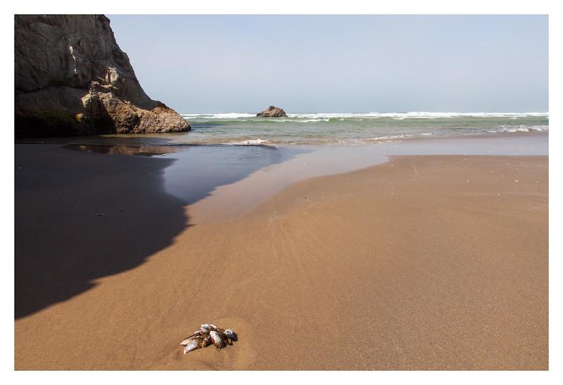 'Marooned', at Arcadia Beach.