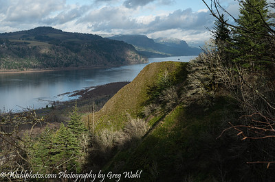 Columbia River Gorge_2020 (10 of 12)