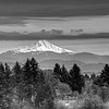 Mt Jefferson in Black and White today