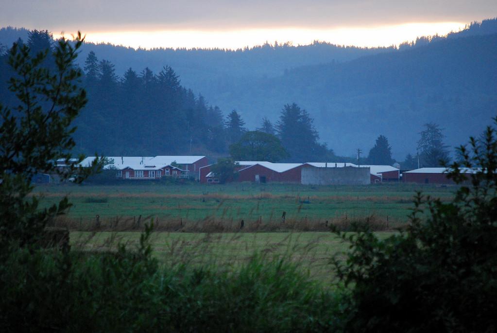 Dawn over a dairly farm
