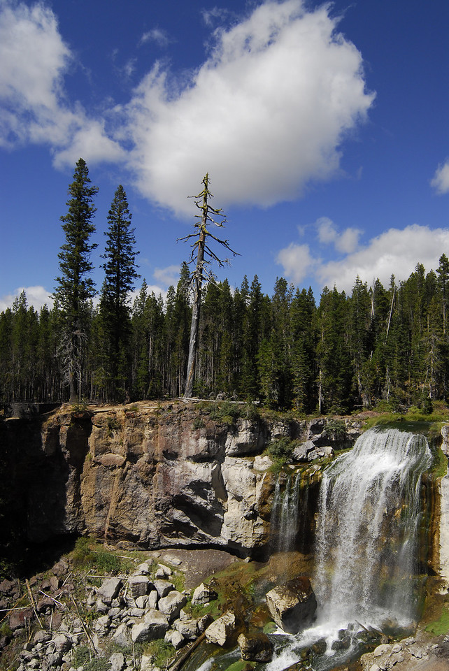 Deschutes National Forest, east of LaPine