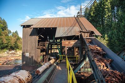 Oregon Sawmill - bsquarephoto