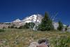 Mt. Hood - August 2005