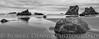 Redwoods - Bandon OR-052813-3240-Edit-Edit