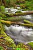Oregon, Mount Hood, Stream, HDR, 俄勒冈, 胡山, 流水, 风景, 高动态范围拍摄