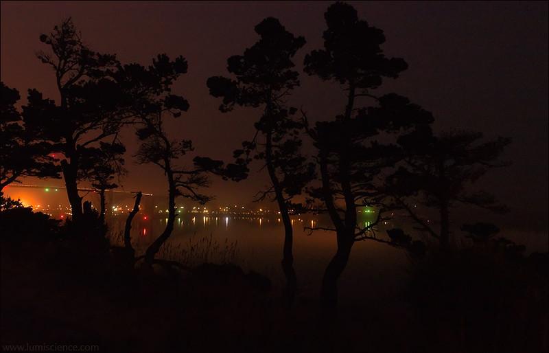 Yaquina Bay, night view