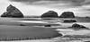 Redwoods - Bandon OR-052813-1014-Edit