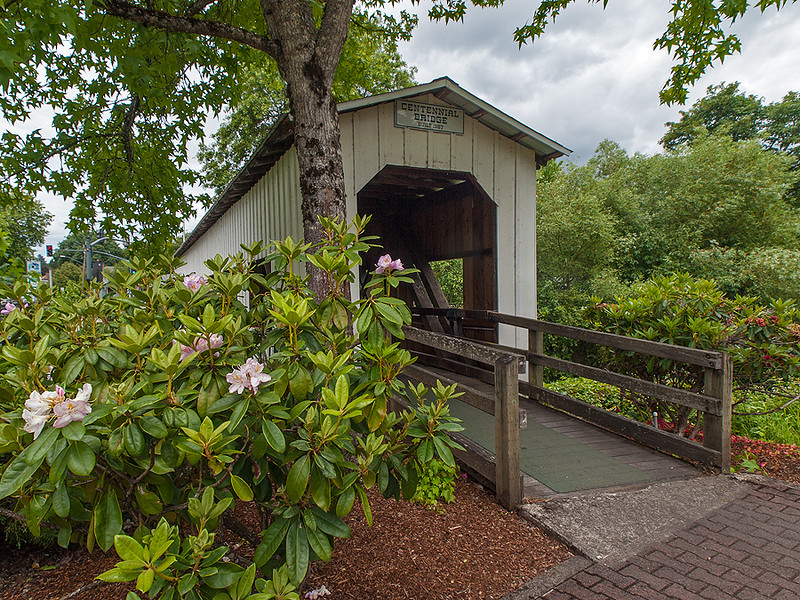 Covered Bridge at Cottage Grove